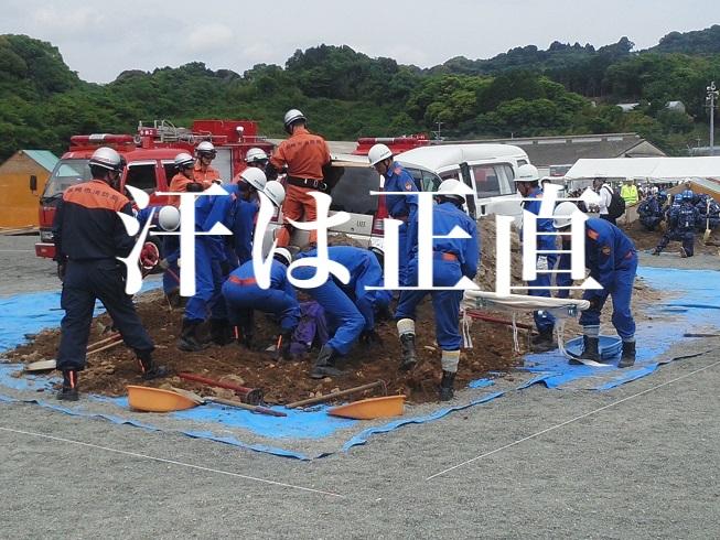 f:id:gemini-yahata:20190521211440j:plain