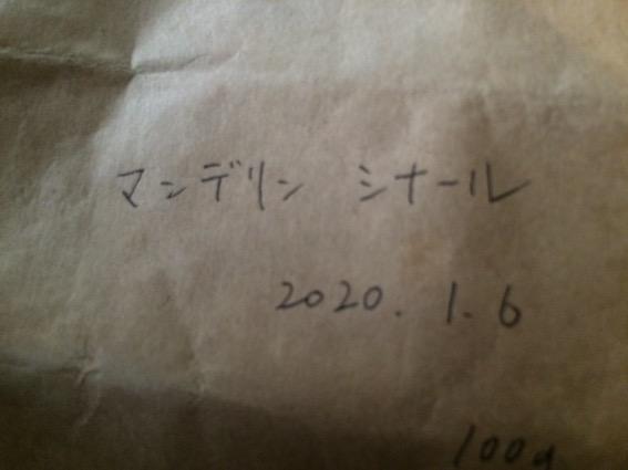 f:id:gemini-yahata:20200116210244j:plain