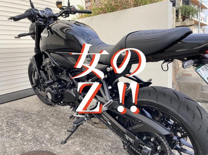 f:id:gemini-yahata:20210113162536j:plain