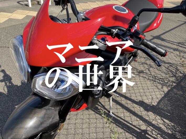 f:id:gemini-yahata:20210412130819j:plain