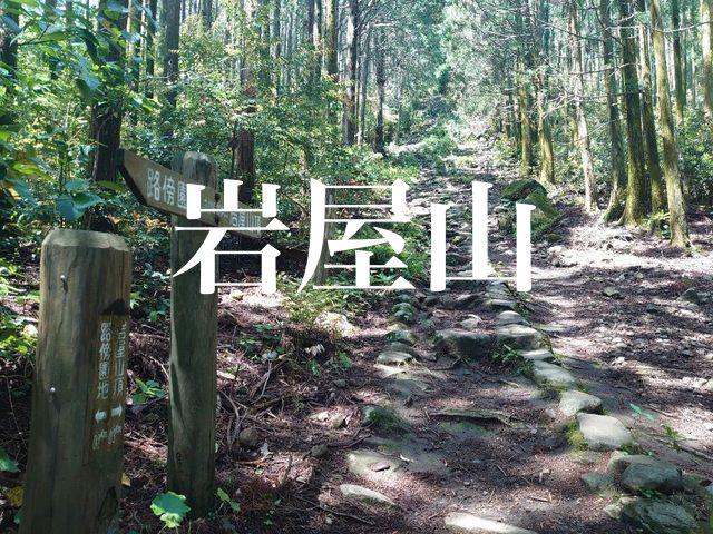 f:id:gemini-yahata:20210521130526j:plain