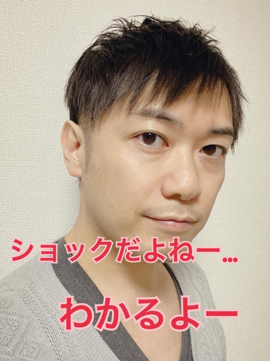 f:id:gen-ron:20200507195525j:plain