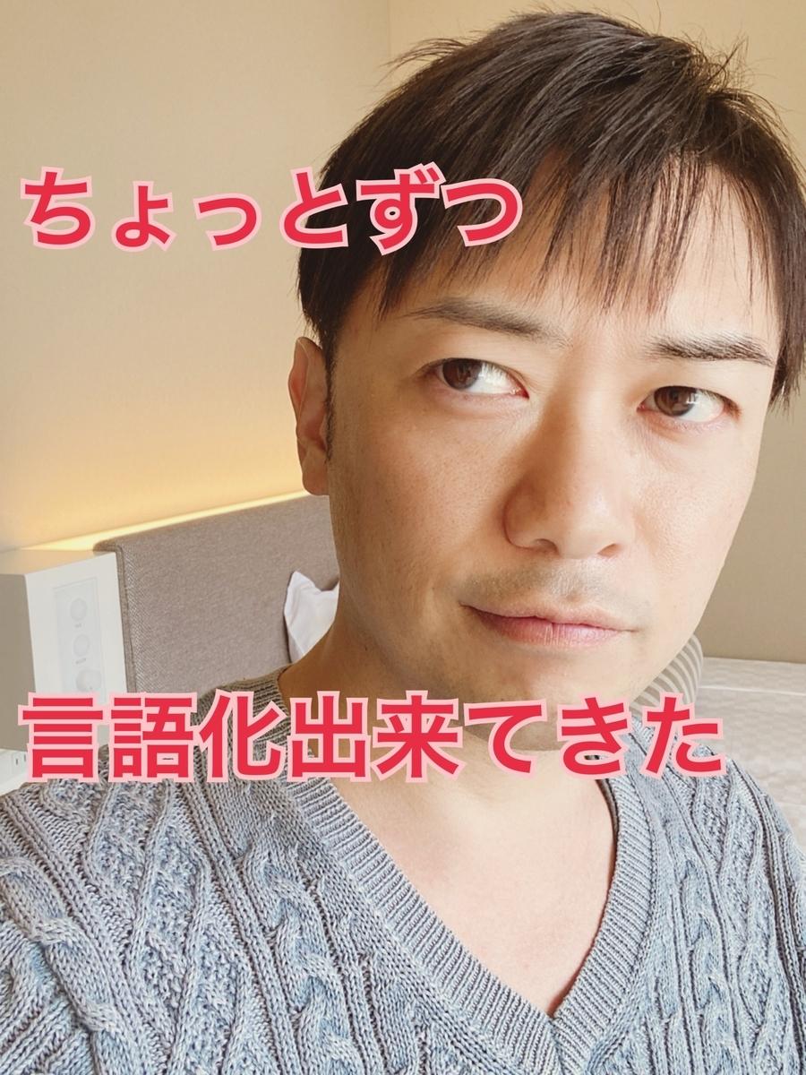 f:id:gen-ron:20200523231209j:plain