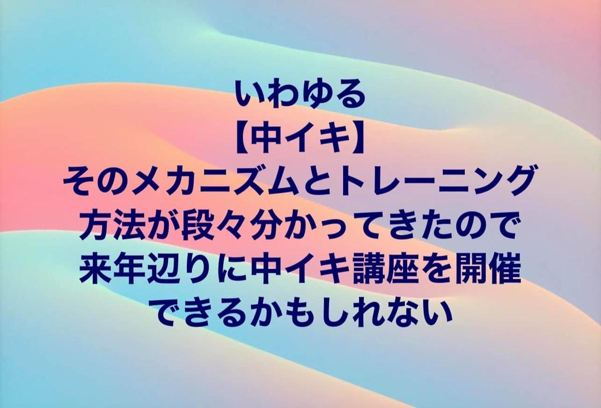 f:id:gen-ron:20210326224219j:plain