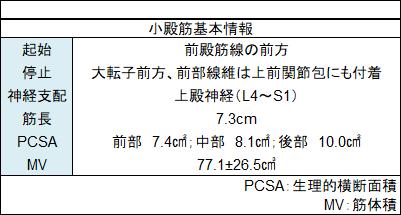 f:id:gene_ptkh:20190104202843p:plain