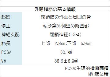 f:id:gene_ptkh:20190106214006p:plain