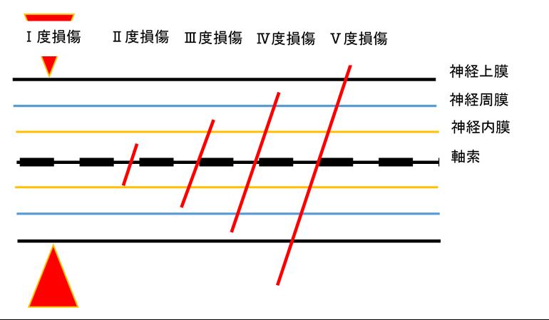 f:id:gene_ptkh:20190217232409p:plain