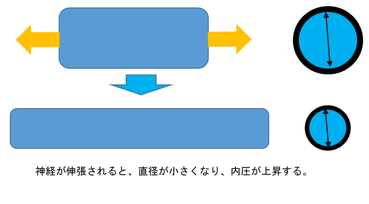 f:id:gene_ptkh:20190218222630p:plain