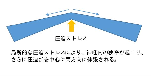 f:id:gene_ptkh:20190218223451p:plain