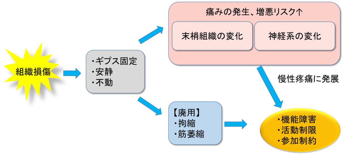 f:id:gene_ptkh:20190430111005p:plain