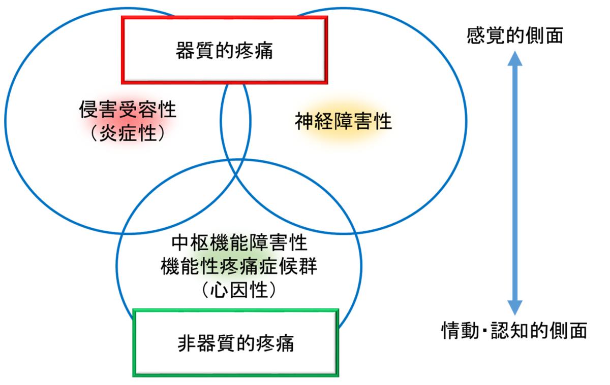 f:id:gene_ptkh:20190518224657p:plain