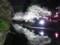 富山城址公園の夜桜