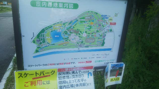 f:id:genkai35sai:20200428181827j:image