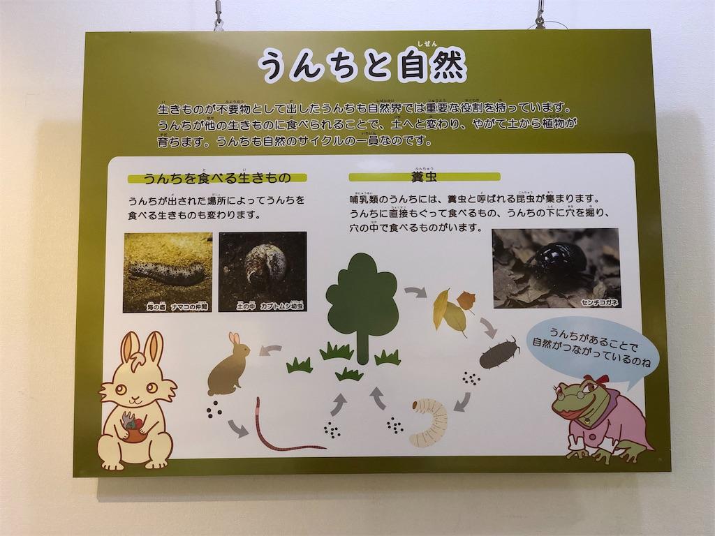 f:id:genko-library:20181209055851j:image