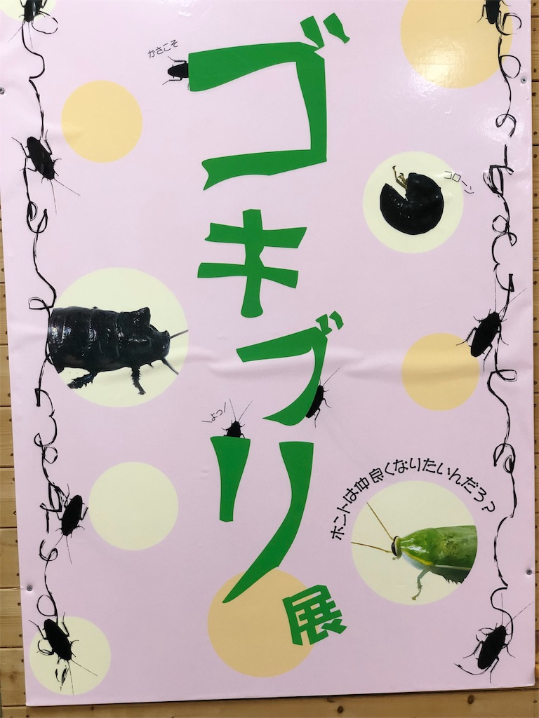 f:id:genko-library:20181209055957j:image