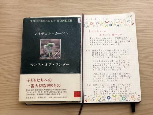 f:id:genko-library:20191102142141j:plain