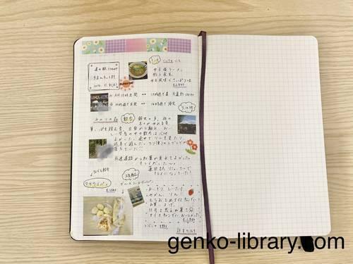 f:id:genko-library:20201108190719j:plain