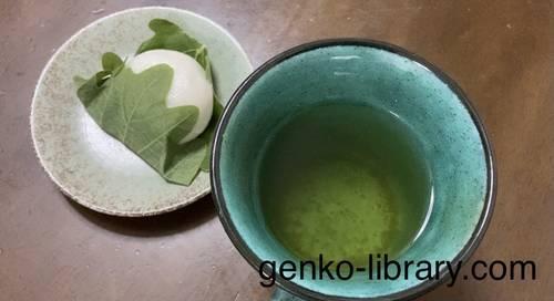 f:id:genko-library:20210506053310j:plain