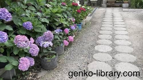 f:id:genko-library:20210614142931j:plain