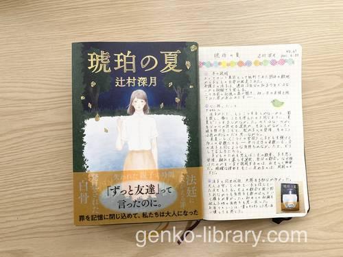 f:id:genko-library:20210621051419j:plain