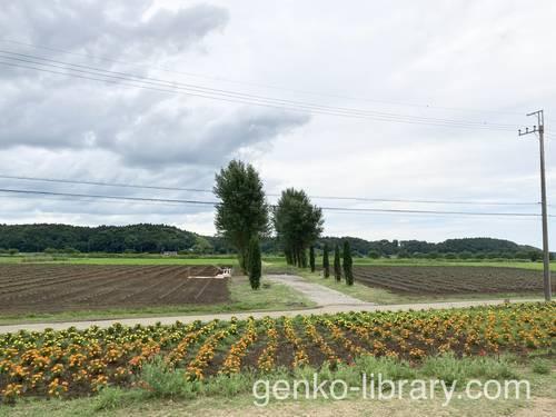 f:id:genko-library:20210623054911j:plain