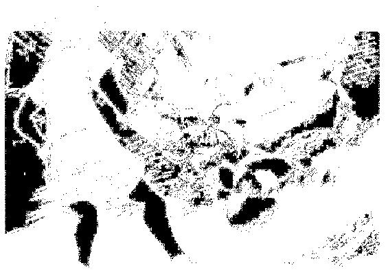 f:id:genshiohajiki:20161102024807p:plain