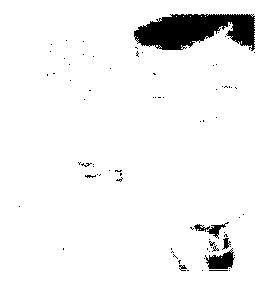 f:id:genshiohajiki:20161126014322p:plain