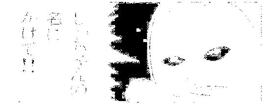 f:id:genshiohajiki:20161231002537p:plain