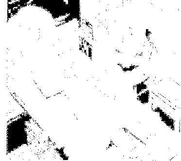 f:id:genshiohajiki:20170131021842p:plain