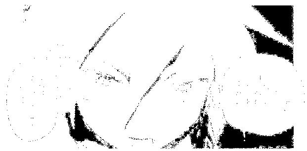 f:id:genshiohajiki:20170131024652p:plain
