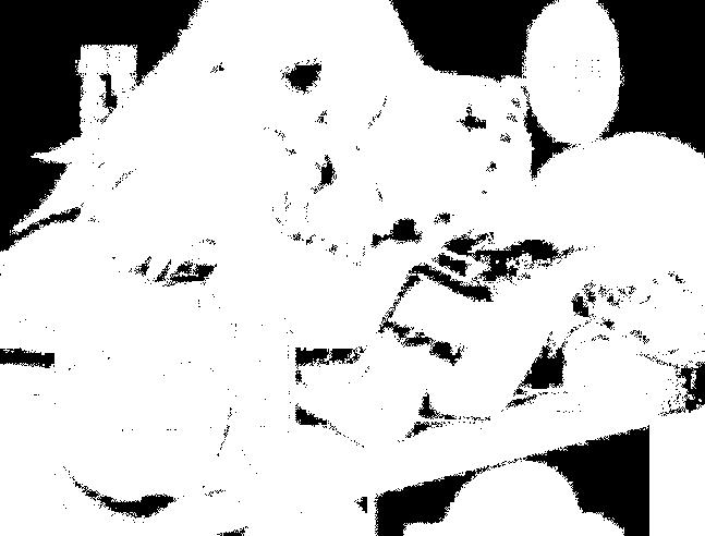 f:id:genshiohajiki:20170131030342p:plain