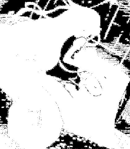 f:id:genshiohajiki:20170301011155p:plain