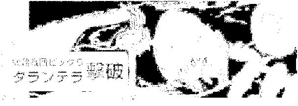 f:id:genshiohajiki:20170301025323p:plain