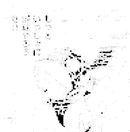 f:id:genshiohajiki:20170328003736p:plain