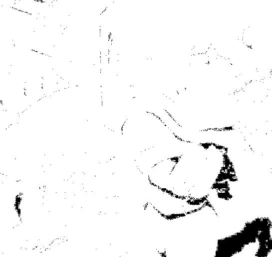 f:id:genshiohajiki:20170403033734p:plain