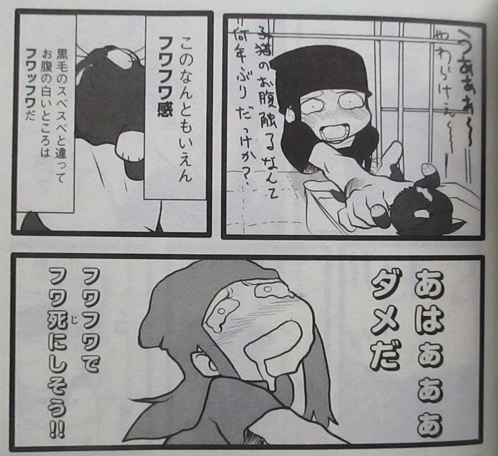 f:id:genshiohajiki:20190120204742j:plain
