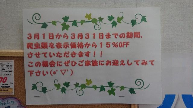f:id:genshiohajiki:20200322124217j:image