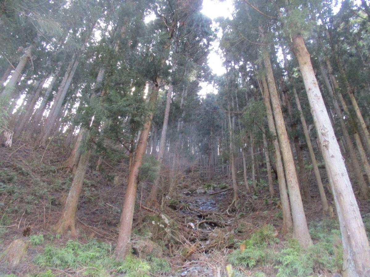 f:id:genta-san:20200313132907j:plain