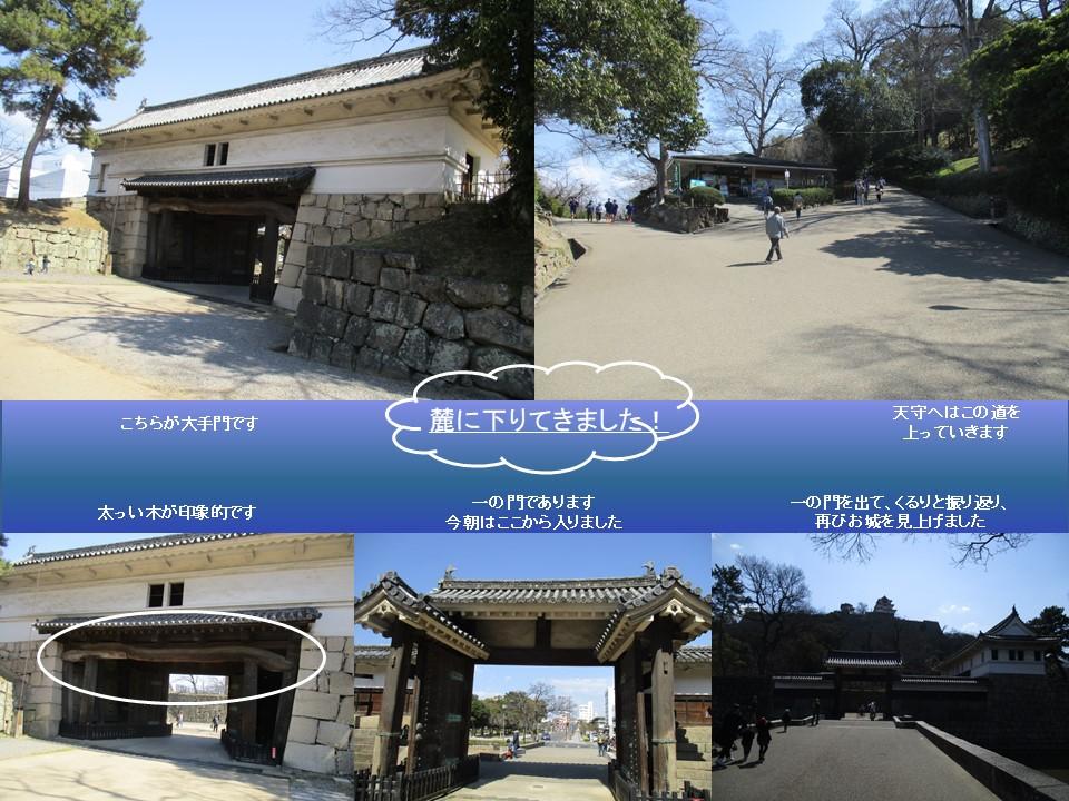 f:id:genta-san:20200501134706j:plain