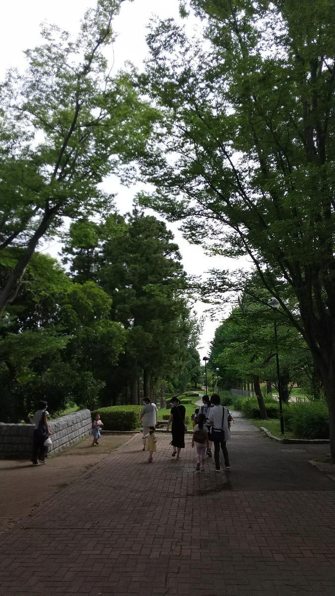 f:id:genta-san:20200703154222j:plain