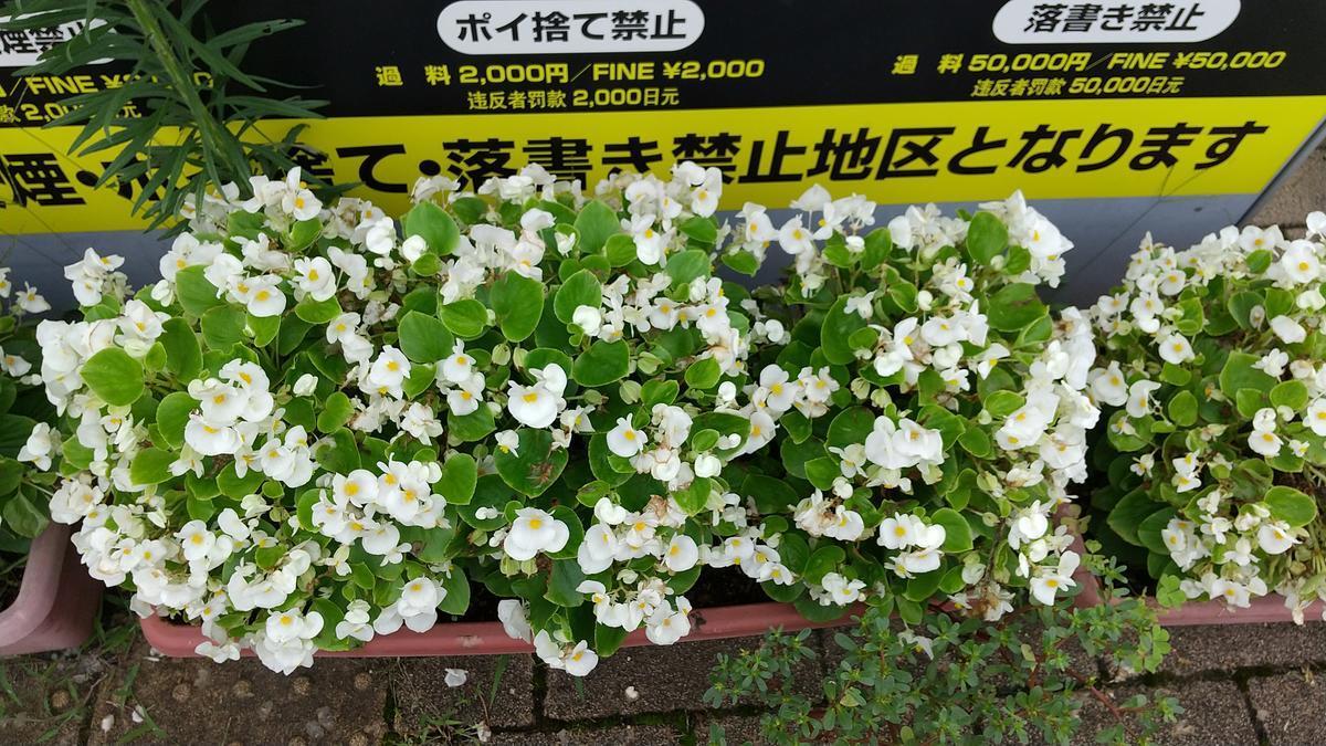 f:id:genta-san:20200730123759j:plain