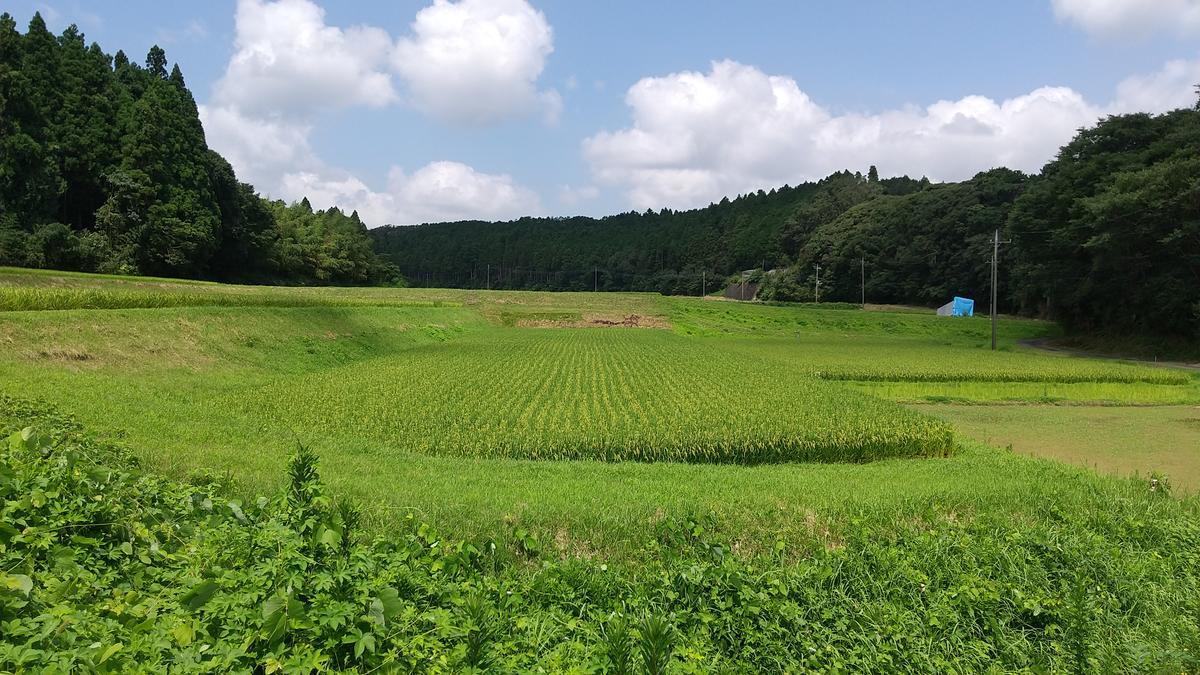 f:id:genta-san:20200805181634j:plain