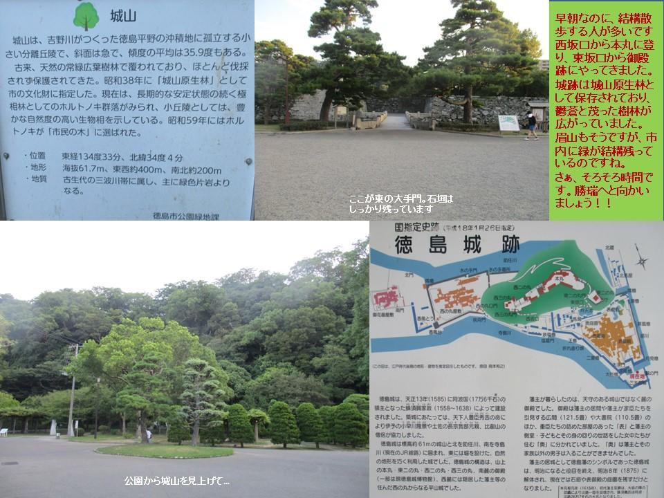f:id:genta-san:20200809005902j:plain