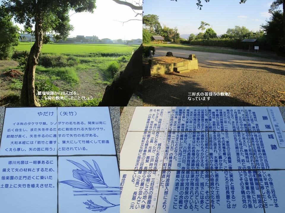 f:id:genta-san:20200809005910j:plain