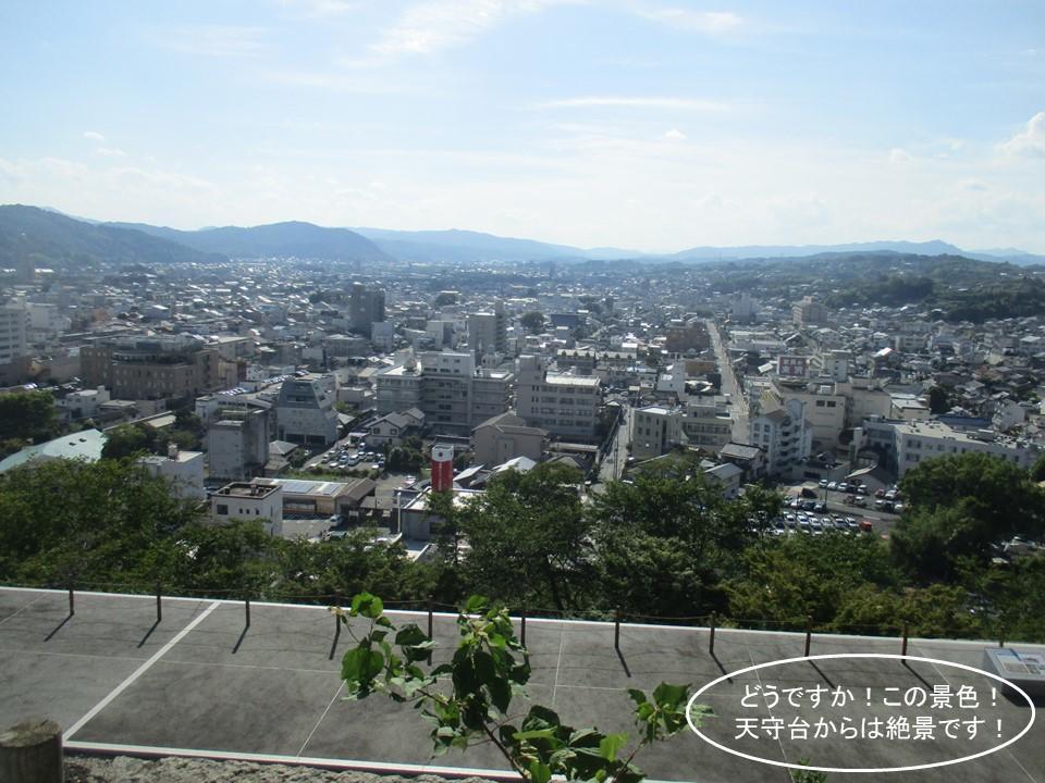 f:id:genta-san:20200809010326j:plain