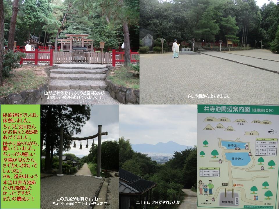 f:id:genta-san:20200809010507j:plain