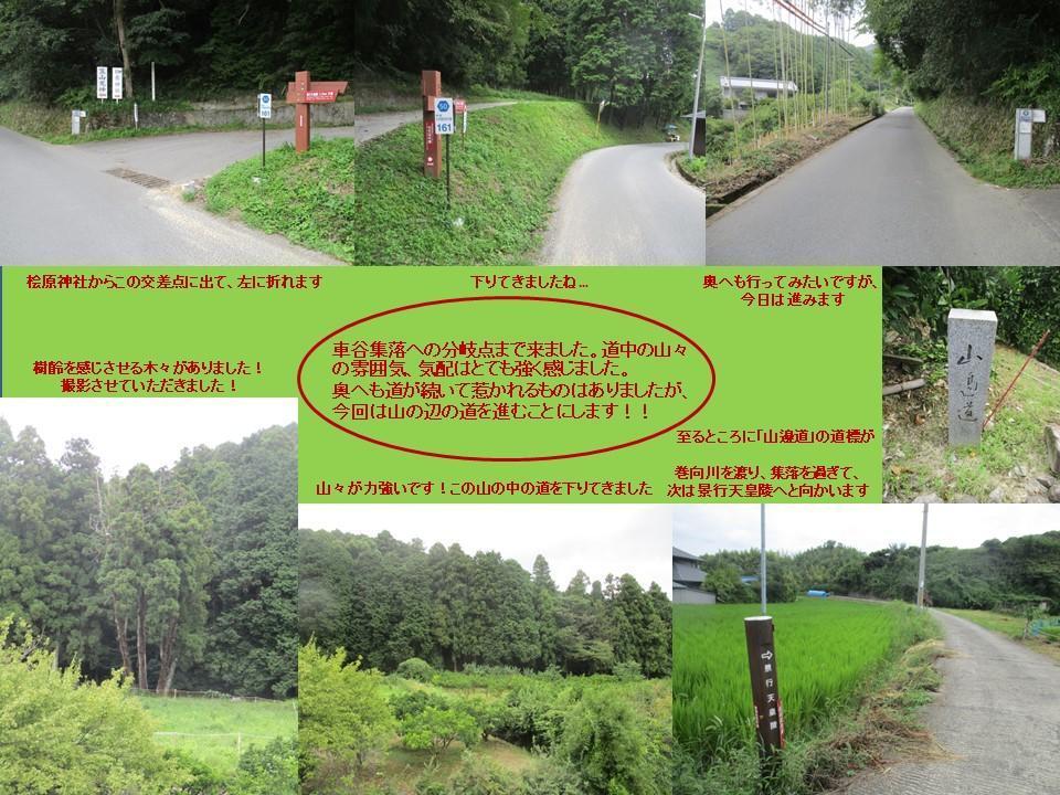 f:id:genta-san:20200809010515j:plain