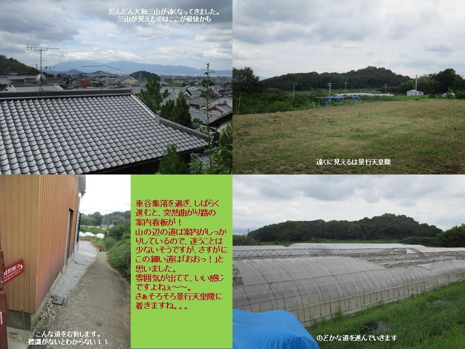 f:id:genta-san:20200809010519j:plain