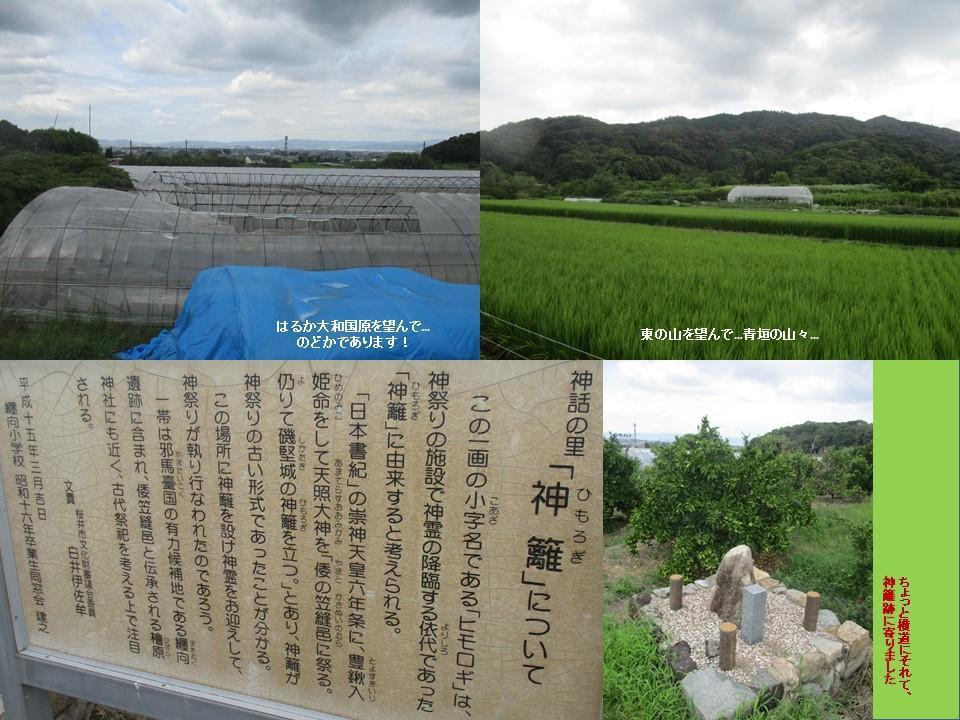 f:id:genta-san:20200809010523j:plain