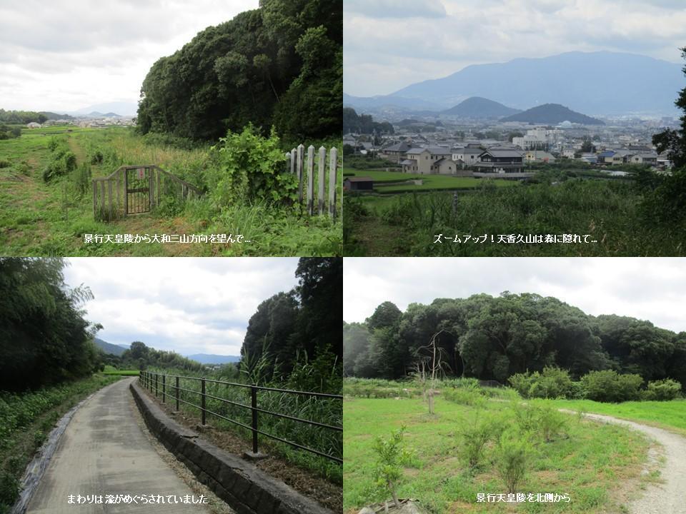 f:id:genta-san:20200809010527j:plain
